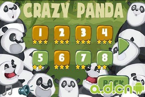 疯狂的熊猫 Crazy Panda